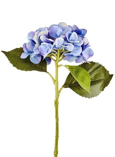 The Mia Fiorina Ortanca (Dal) Mavi Mavi